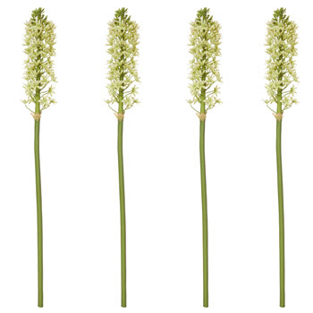 Rogue Pineapple Lily Stem Light Green Single Stem Faux Flower