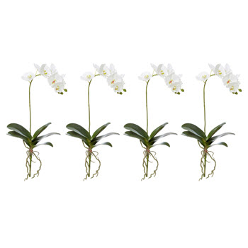 Rogue Phalaenopsis Plant Single Stem Faux Flower
