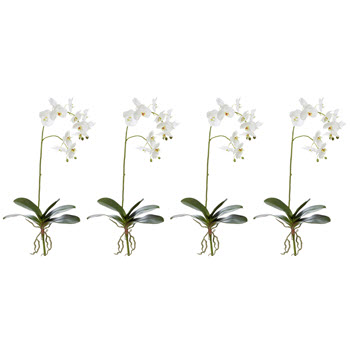 Rogue Phalaenopsis Stems Single Stem Faux Flower
