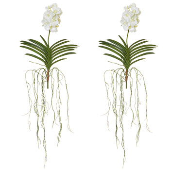 Rogue Vanda Orchid Stem Single Stem Faux Flower