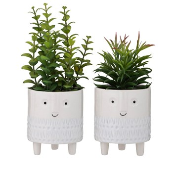 Emporium Plastic & Ceramic 2-Piece Plant-Happy Pot Set Assorted Designs