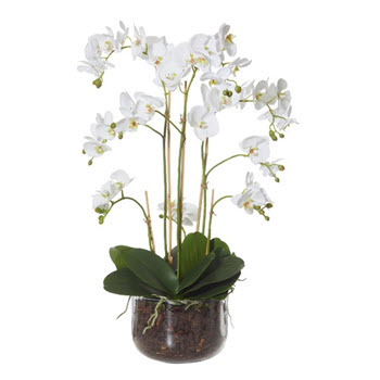 Artificial Orchids with Avery Bowl