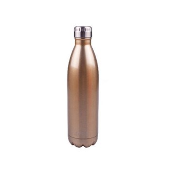 D.Line Oasis 500ml Insulated Drink Bottle Stainless Steel Champagne