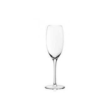 Plumm Outdoors 255ml Sparkling Champagne Glass Set of 4