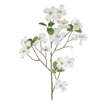 Florabelle Living Dogwood Spray 90cm