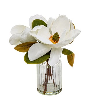 Florabelle Living Plastic & Ceramic Magnolia in Glass Vase 30cm White