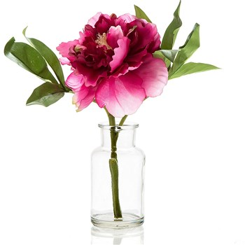 Florabelle Living Polyester Peony in Glass Vase 20 x 25cm Fuschia