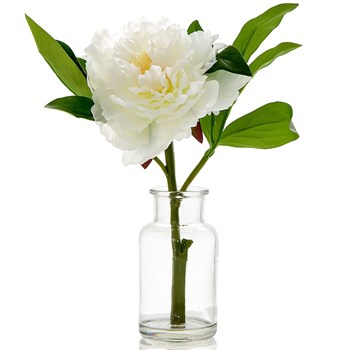 Florabelle Living Polyester Peony in Glass Vase 20 x 25cm White
