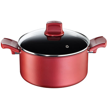 Tefal Character Stewpot 24cm