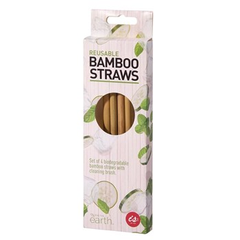 IS Gift Reusable Bamboo Straws with Cleaning Brush Set of 4