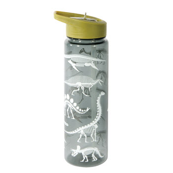 IS Gift Fun Times Dinosaur Drink Bottle