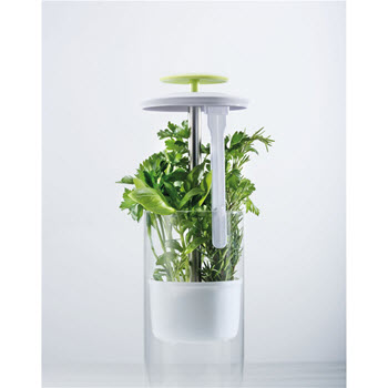 Cuisinepro Savor Herb Keeper