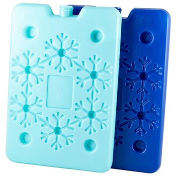 TakeAway Out Plastic 2 Piece Ice Cooler Brick Set Blue